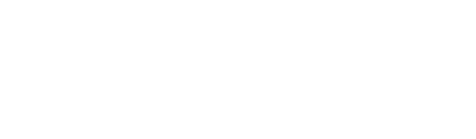 Logo_eMotionIT_wit